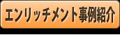 エンリッチメント事例紹介